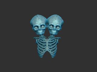 Skull Pendant Facets
